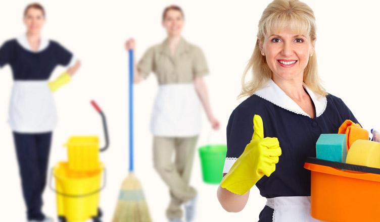Empregada Doméstica tem Direito ao Abono Salarial